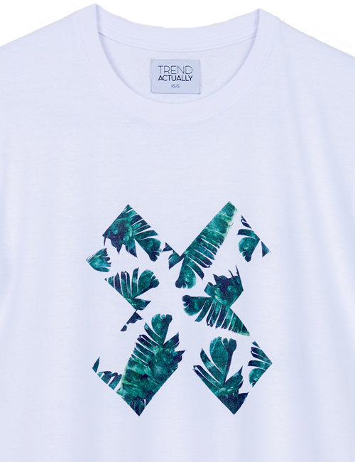 PALM-VIBES-ZOOM